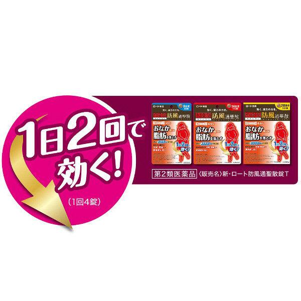 新・ロート防風通聖散錠T 40錠