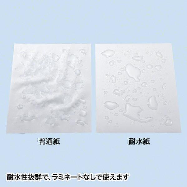 カラーレーザー用 耐水紙・標準 A4