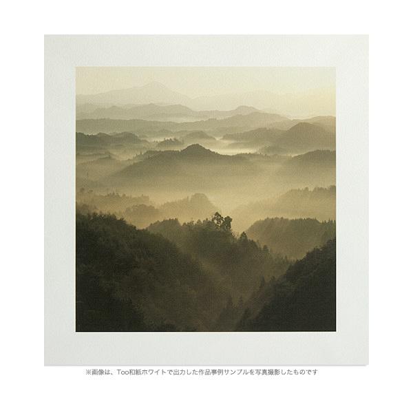 Too 和紙 [ ホワイト ] IJR24-22D (取寄品)