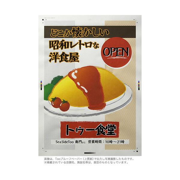 Too プルーフペーパー [ 上質紙 ] IJR24-T10D (取寄品)