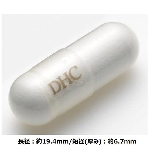 DHC カルシュウム マグネシュウム 60粒