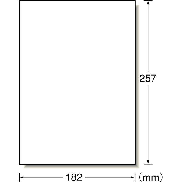 【大容量】 エーワン フリーラベル 整理・表示用 手書き用 上質紙 白 B5 ノーカット1面 1箱(500シート入) 06195(取寄品)