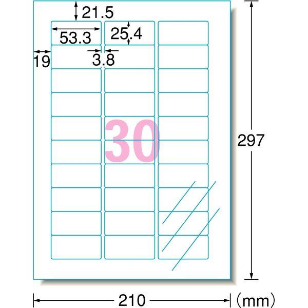 エーワン ラベルシール パッケージラベル レーザープリンタ 光沢フィルム 透明 A4 30面 1袋(10シート入) 31583(取寄品)