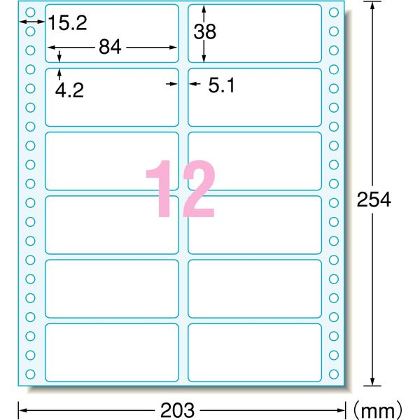 エーワン コンピュータフォームラベル 8インチ幅 12面 28091 1袋(125シート入) (取寄品)