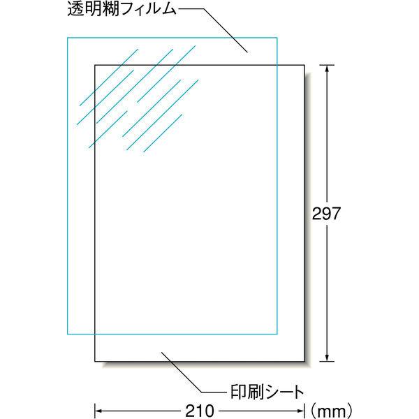 エーワン 自分で作るデカールシール タトゥーシール インクジェット 光沢フィルム 透明 A4 ノーカット1面 1袋(1セット入) 81022(取寄品)