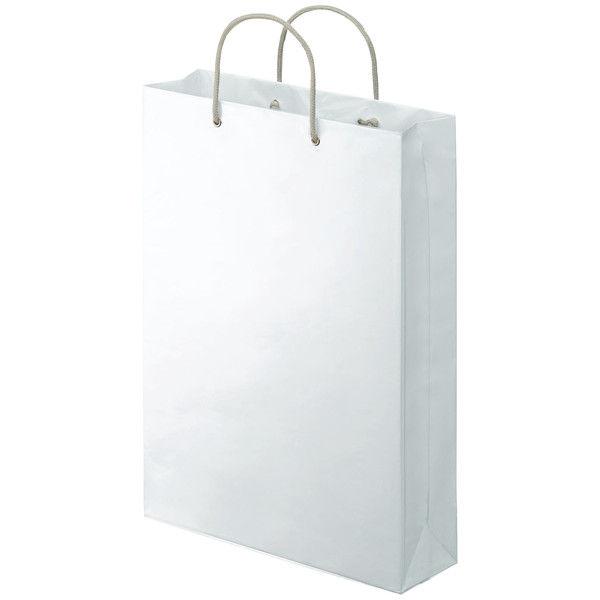カバー付 手提げ紙袋 LL 10枚