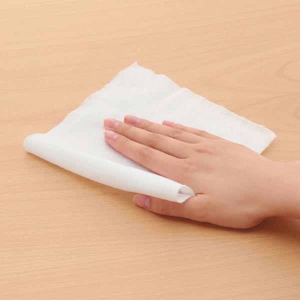 オオサキメディカル 環境除菌クロス ワイド 詰替用 250枚入 74983 1袋(250枚入)
