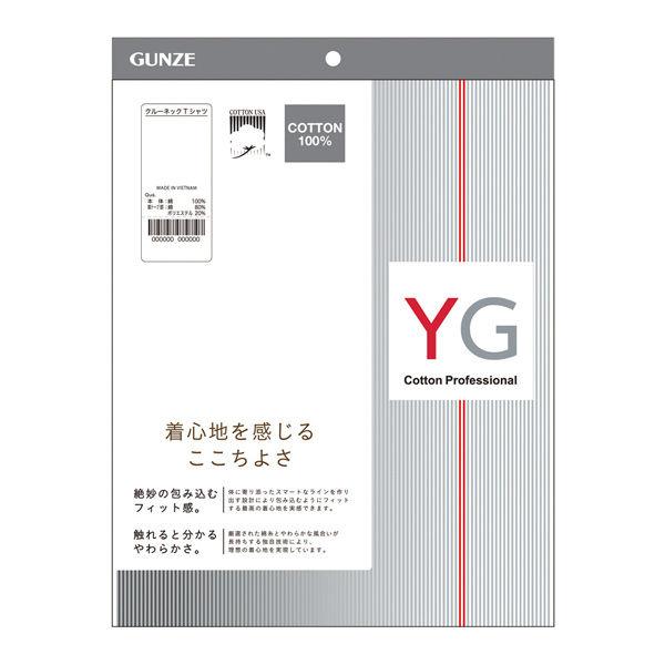 グンゼ男性用肌着YG3LホワイトVネック