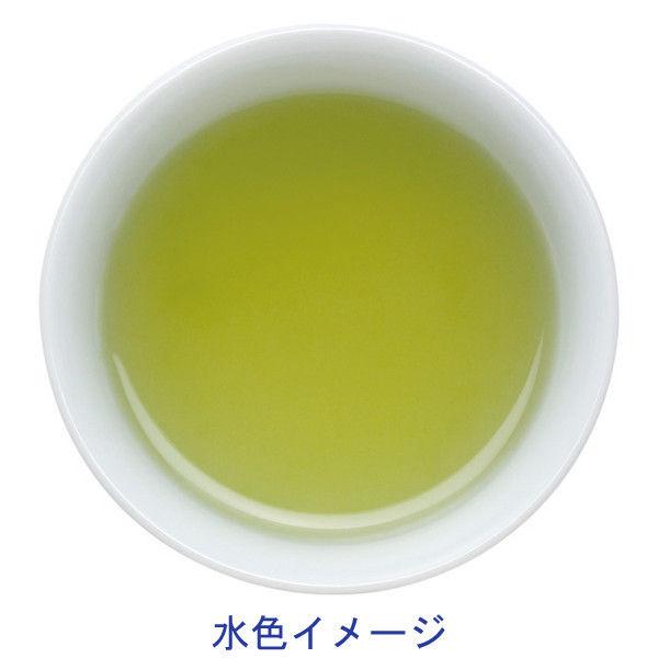 水出し抹茶入り緑茶 1袋(100バッグ入