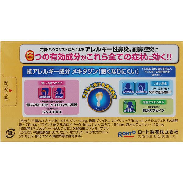 ロートアルガード鼻炎内服薬 10カプセル