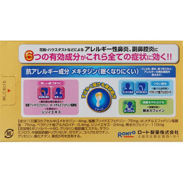 ロートアルガード鼻炎内服薬 20カプセル