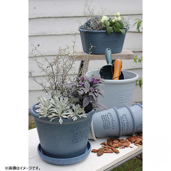 プラスチック プランター 丸型長鉢タイプ