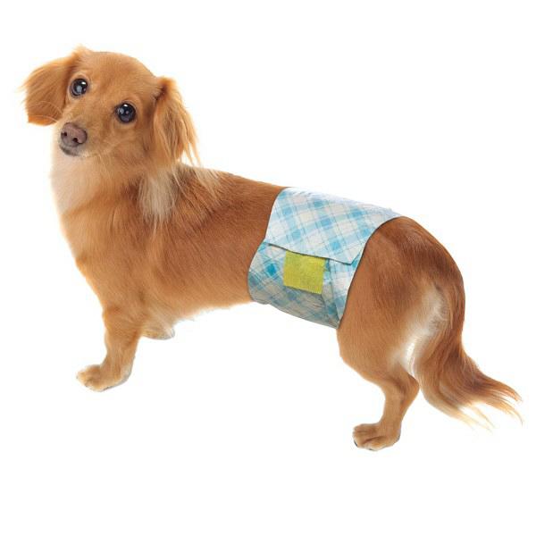 男の子のためのマナーおむつ 小型犬用