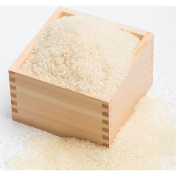 【無洗米】栃木なすひかり 5kg
