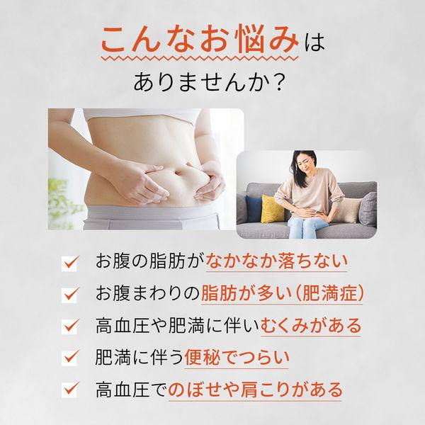 新・ロート防風通聖散錠満量 360錠