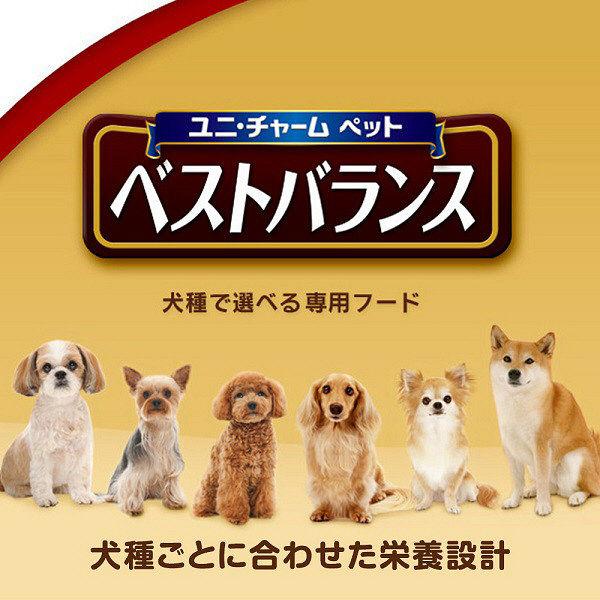ベストバランス 柴犬 低脂肪7歳1.8k