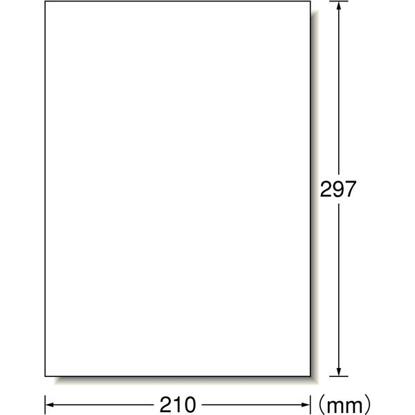 エーワン ラベルシール 表示・宛名ラベル プリンタ兼用 マット紙 白 A4 ノーカット1面 1袋(20シート入) 28409
