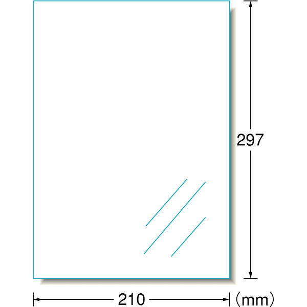 エーワン ラベルシール 表示・パッケージラベル インクジェット つや消しフィルム 透明 A4 ノーカット 1面 1袋(10シート入) 28793