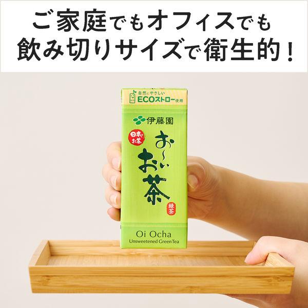 おーいお茶 緑茶 250ml 24本