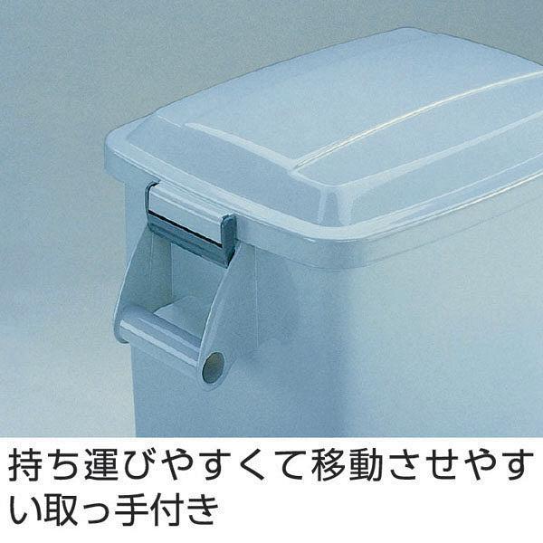 テラモト 厨房ペール45 キャスター付 DS-260-045-6 (直送品)