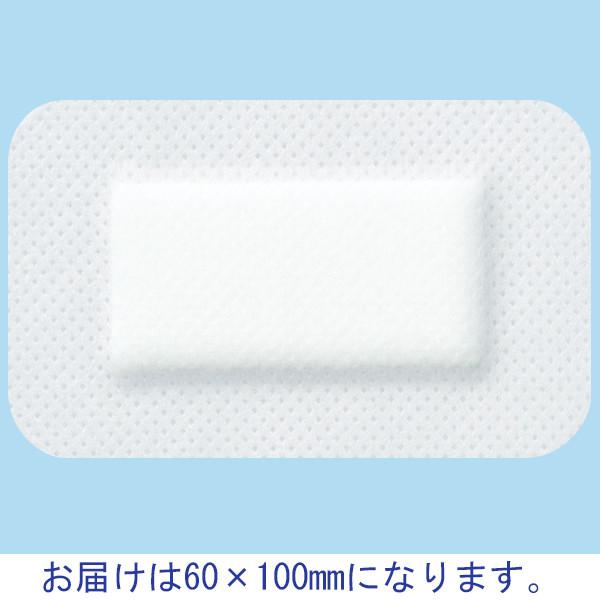 ニチバン カテリーパッドマイルド No.0610 1箱(50枚入) (取寄品)