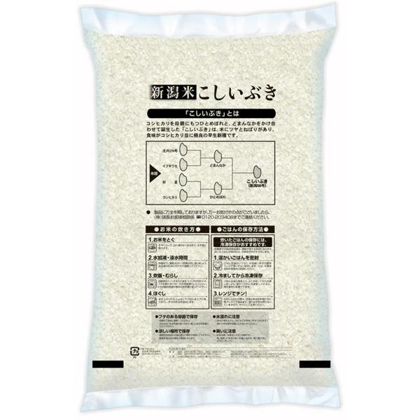 新米【精白米】新潟県産こしいぶき5kg