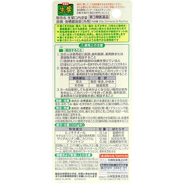 生葉口内塗薬 20g
