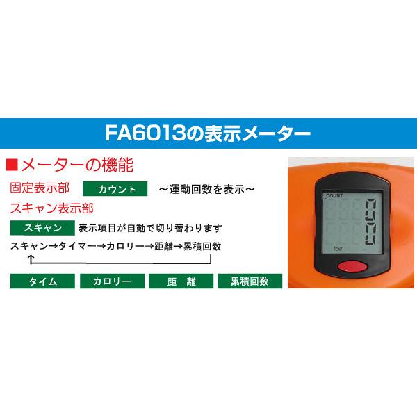 アルインコ パラレルステッパー FA6013 (取寄品)