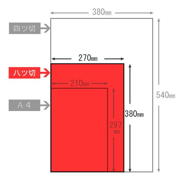 大王製紙 色画用紙 八切 ゆき A-49 1セット(50枚:10枚入×5)