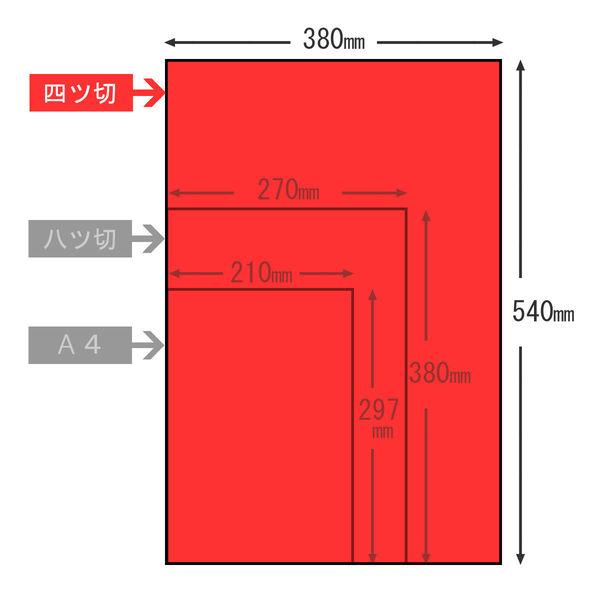 大王製紙 色画用紙 四切 赤 C-21 1セット(100枚:10枚入×10)