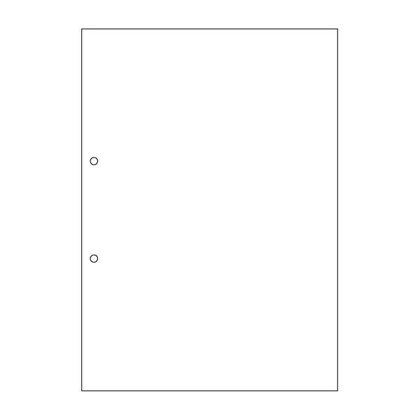 ヒサゴ A4ノーカーボン 白紙2穴 BPC2001 1パック(100枚入) (取寄品)