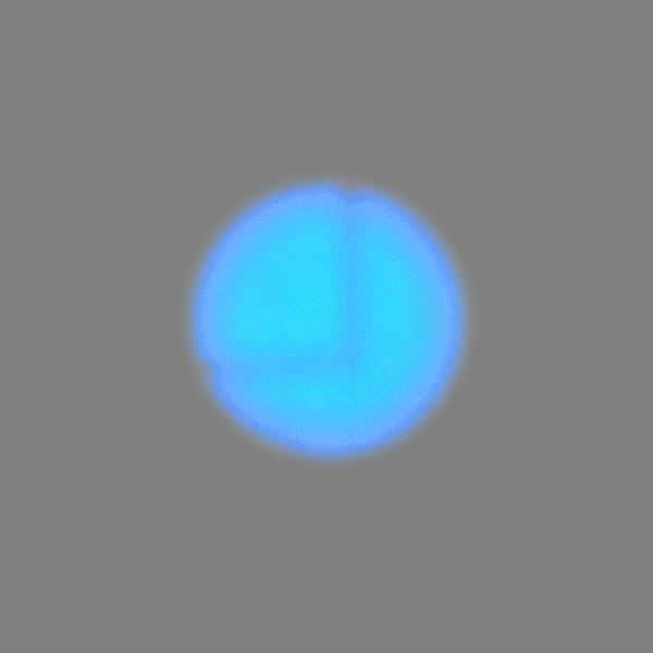 LEDポインタ ブルー SP-B110