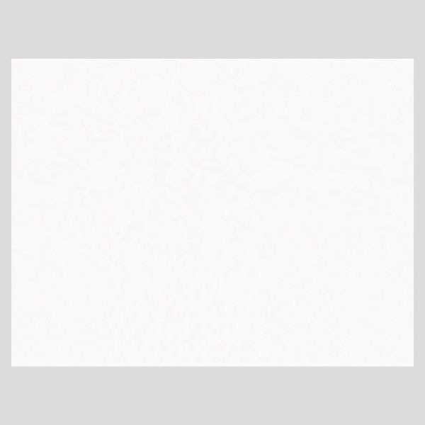 マルマン バライタ フォトグラフィック A3+ 00002277 1冊(25枚) (直送品)