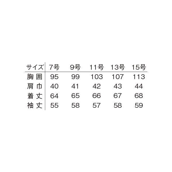 明石スクールユニフォームカンパニー レディースジャケット ネイビー 19 UN1906-7-19 (直送品)