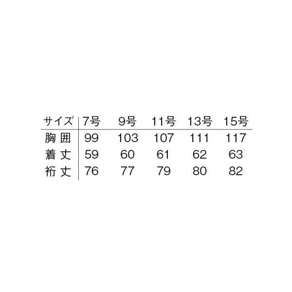 明石スクールユニフォームカンパニー レディースブルゾン サックス 17 UN2340-62-17 (直送品)