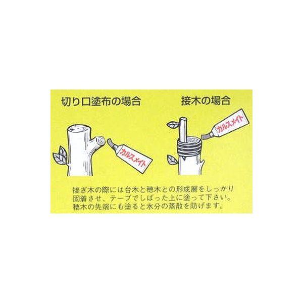 【園芸資材・癒合剤】富士商事 カルスメイト 150g 4965413002002 1セット(3個入)(直送品)