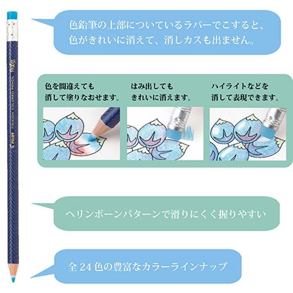 色鉛筆 フリクションカラード 12色