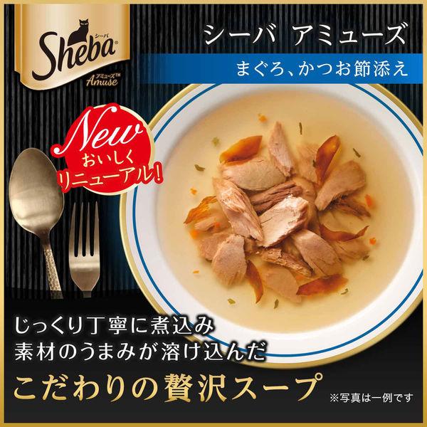 箱売シーバA スープまぐろかつお節×96