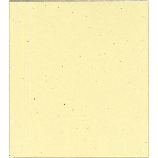 菅公工業 色紙ぼかし 画仙紙 桃 ケ439 5枚 (直送品)