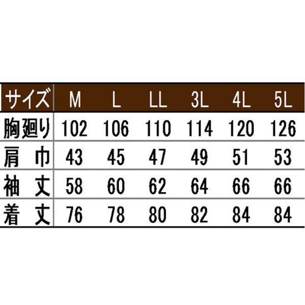 寅壱 シャツ サラシ L 3942-125-9-L (取寄品)