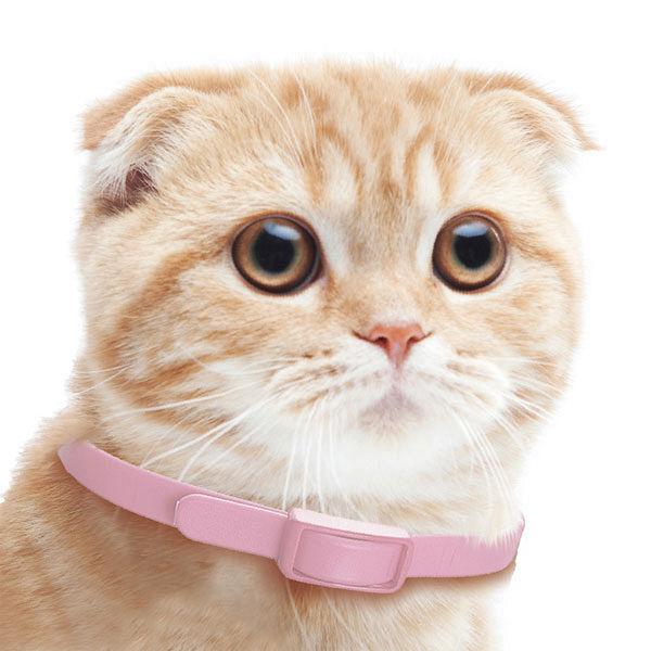 ドギーマン天然ハーブノミよけ首輪猫用1個