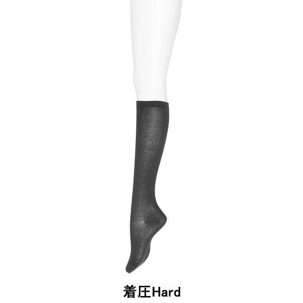 アツギ 靴下 綿混着圧Hard21~23