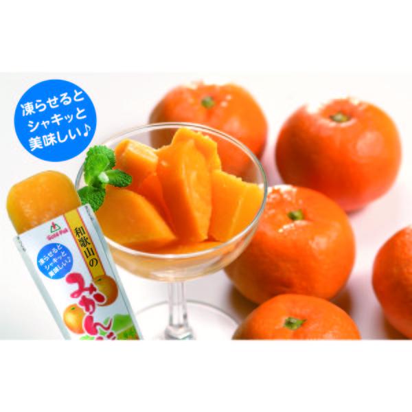和歌山のみかんジュース(パウチ)90g