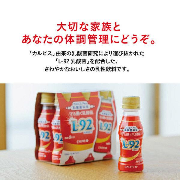 守る働く乳酸菌 赤いお守りBOX 6本