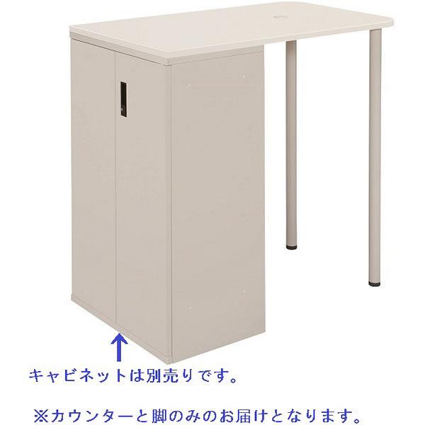 フラットラインストレージ(高さ1100mm)専用サイドカウンター ホワイト プラス (直送品)