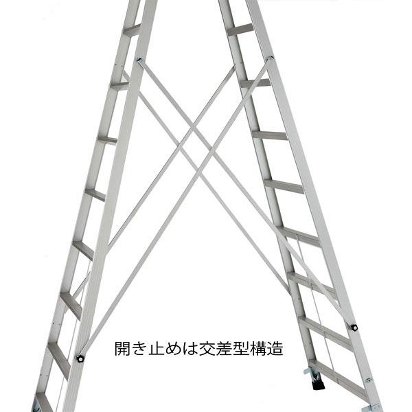 Hasegawa(長谷川工業) アルミ合金 専用脚立 長尺タイプ 12段 (12尺 349cm) XAM2.0-36 1台 (直送品)