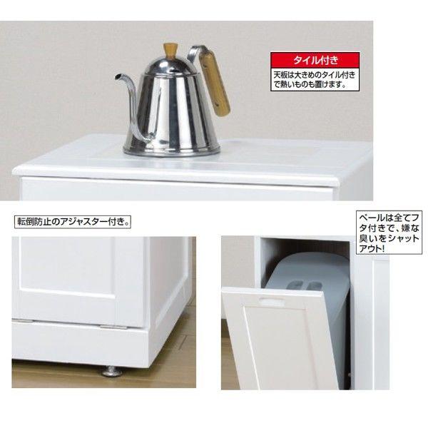 ファミリー・ライフ 木製分別ダストボックス 幅460mm ホワイト (直送品)