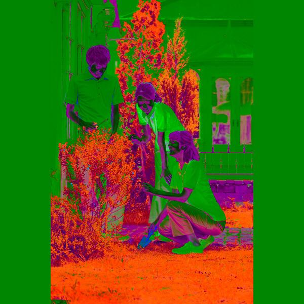 KAZEN レディスポロシャツ 介護ユニフォーム ホワイトxミント L 239-98 (直送品)