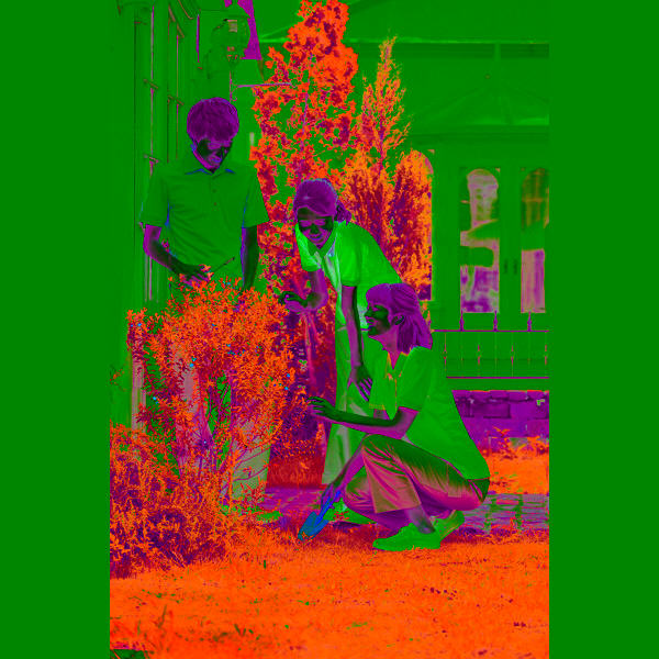 KAZEN レディスポロシャツ 介護ユニフォーム ホワイトxミント S 239-98 (直送品)