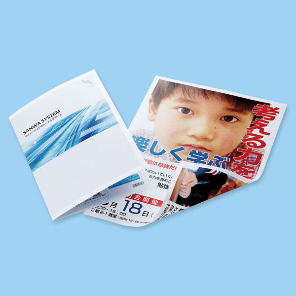 サンワサプライ カラーレーザー用半光沢紙・極薄 LBP-KC2NA3N (直送品)